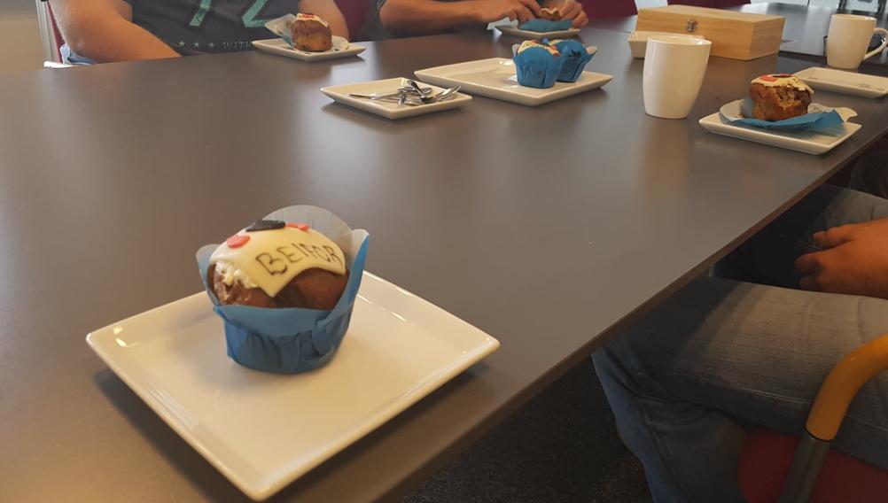 anysense mobile skadeservice app med muffin